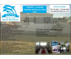 Dolphin Seaview Bed and Breakfast