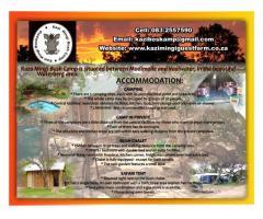 Kazi Mingi Bush Camp