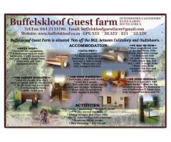 Buffelskloof Guestfarm
